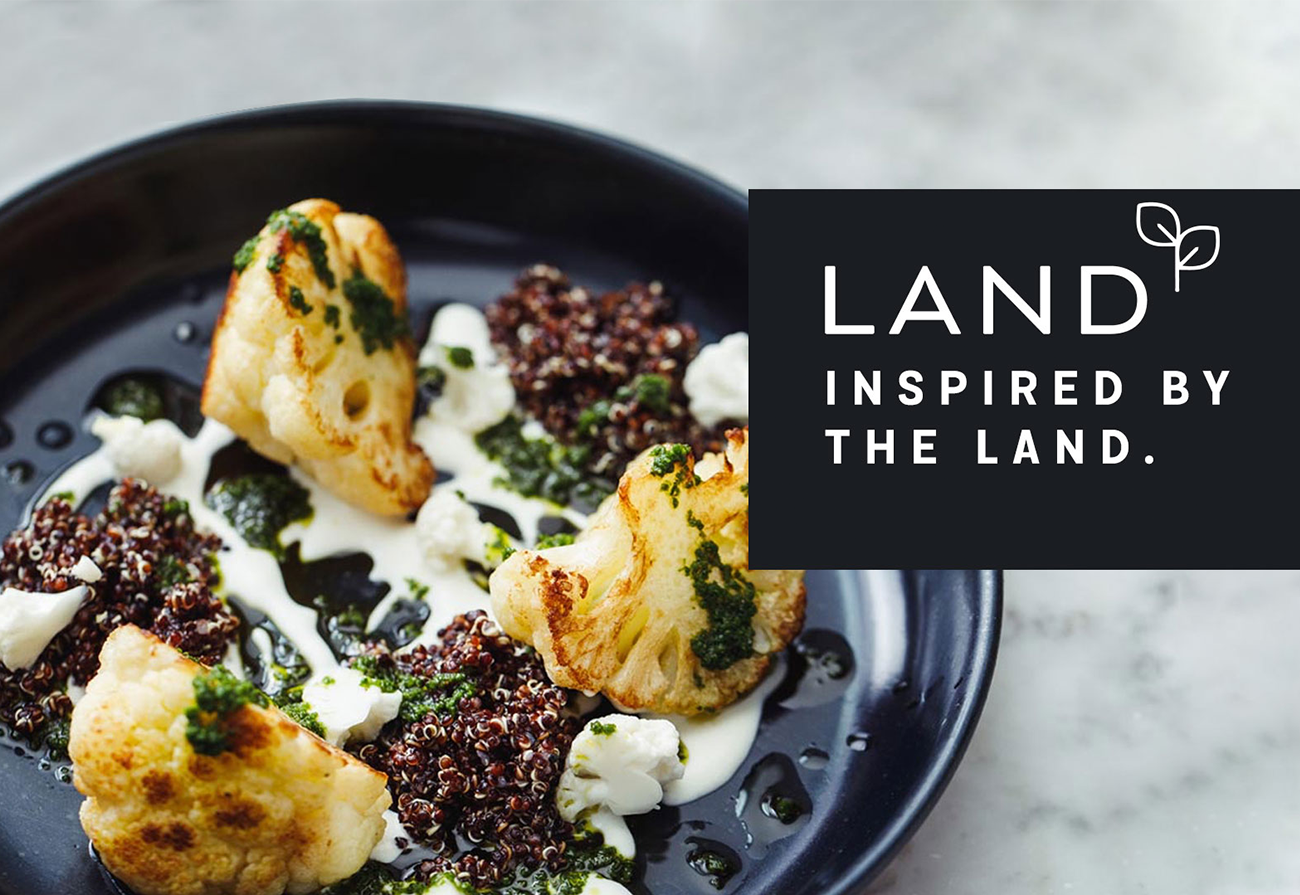 land-new